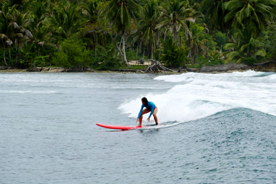longboarder on a small wave with tropical landscape in bocas panama