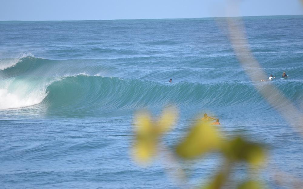 carenero point surf spot bocas del toro panama